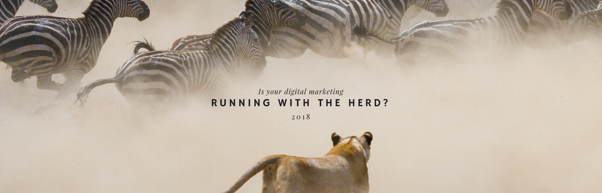 Why Run With The Herd? (When you can leverage this…)